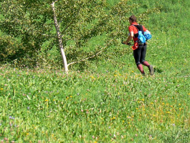 Lana Merino trail running