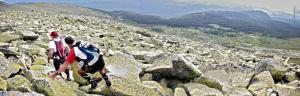 Zapatillas Trail en la cresta claveles