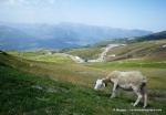 pirineo frances fotos rutas y paisajes   (12)