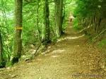 pirineo frances fotos rutas y paisajes   (14)