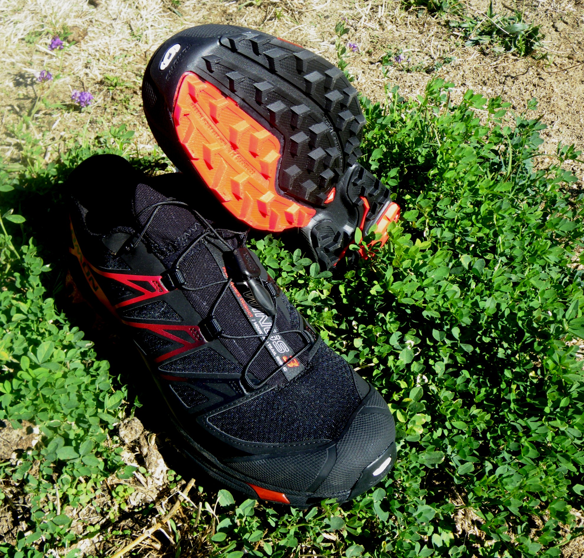 salomon xt wings review