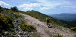 trail montaña ruta la granja cercedilla  (10)