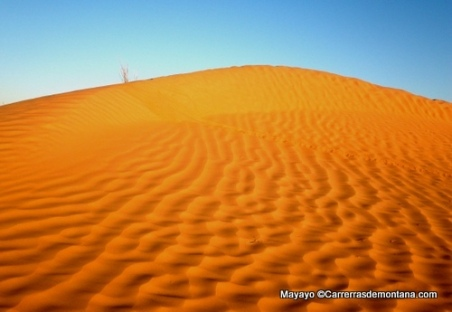 ultra trail 100km del sahara 2014 fotos mayayo (44)