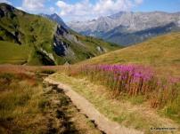 Descenso Catogne a Vallorcine