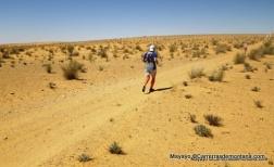 ultra trail 100km del sahara 2014 fotos mayayo (29)