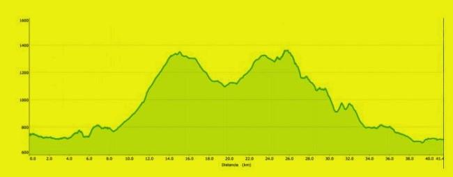 Perfil Homenaje a la Guardia Civil 2015 42km