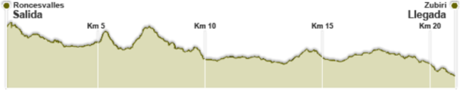 roncesvalles zubiri perfil de carrera