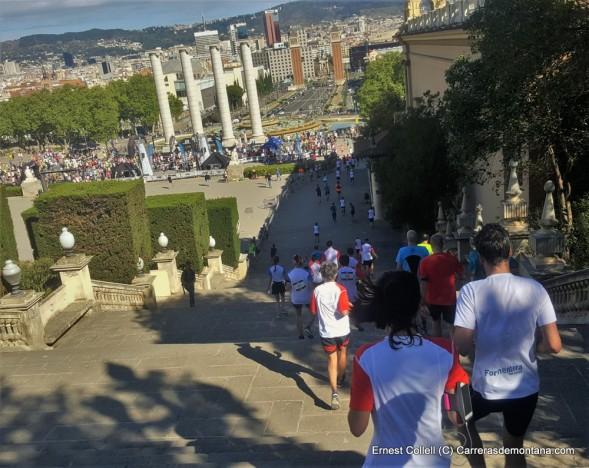 salomon run barcelona 2016 fotos ernest collell carrerasdemontana (1)
