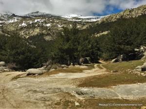 zetas de la pedriza rutas senderismo madrid (49)