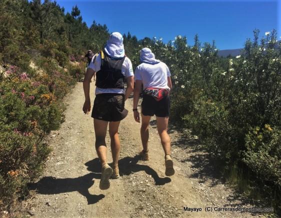 101 peregrinos 2016 fotos (333)