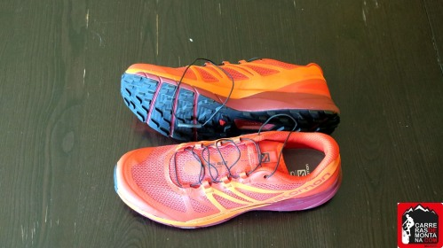 salomon sense ride (3)