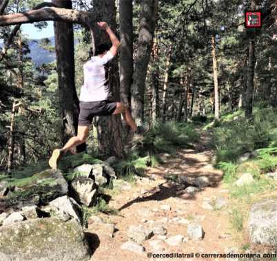 asics-alpine-xt-trail-running (1)