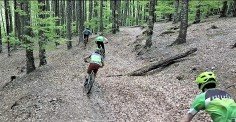 eremua estacion bike y trail pirineo navarro. foto pyrene visuals (4)