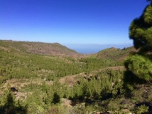 Entremontañas Paralelo 28 trail canarias (9)