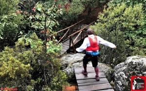 trail running madrid (23)