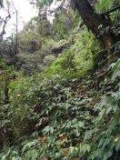 accidentes de montaña nepal lizzy hawker 2