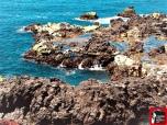 puerto de la cruz fotos mayayo (2) (2)