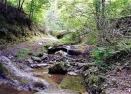 rutas trail euskadi ganeko (10)