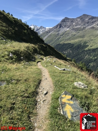 rutas trail running suiza sierre zinal (17) (Copy)